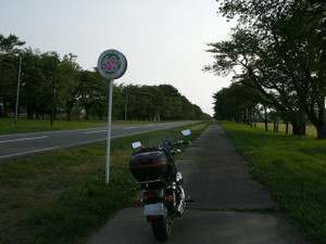 Gedc12511